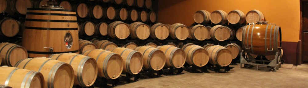 Los Vinos de Cástor